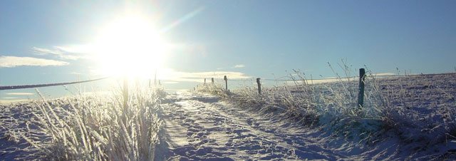 charging-in-winter