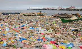 Pollution Caused by Plastic Bag