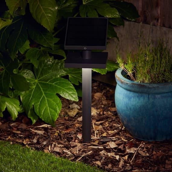 Anthralight Solar Garden Light
