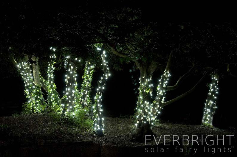 Everbright solar fairy lights warm white 300 leds aloadofball Image collections