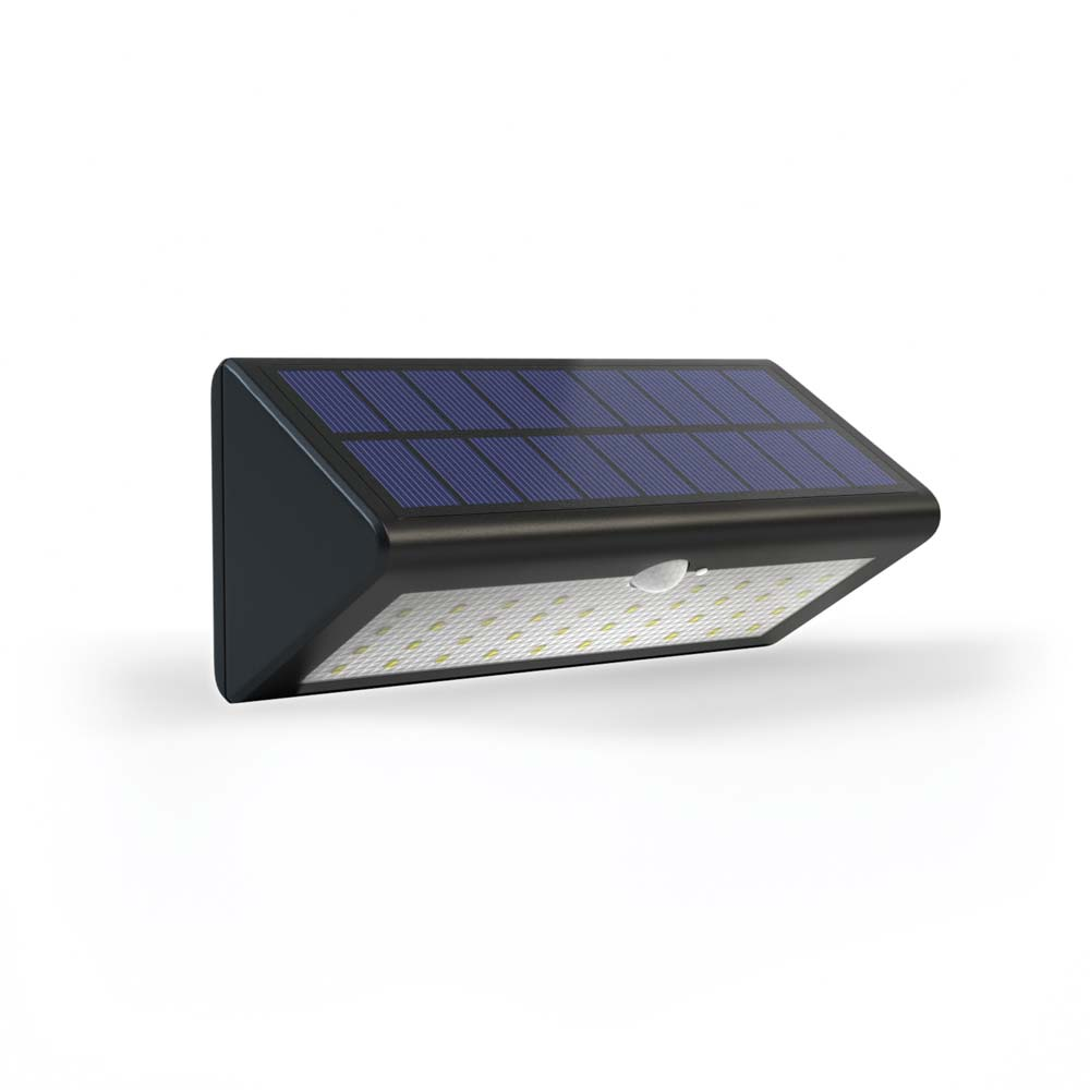 Eco Wedge Pro Solar Security Light: Solar Lights & Solar ...