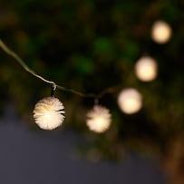 Elan Solar Dandelion Lights - Set Of 30
